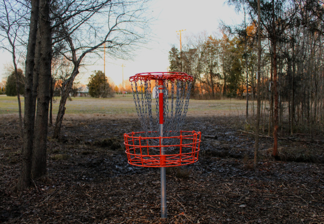 Disc Golf Recreation Page images 650X450 PX